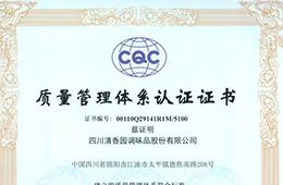 IOS 体系认证证书